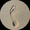 Vue dessus empreinte dans sable 100787 551